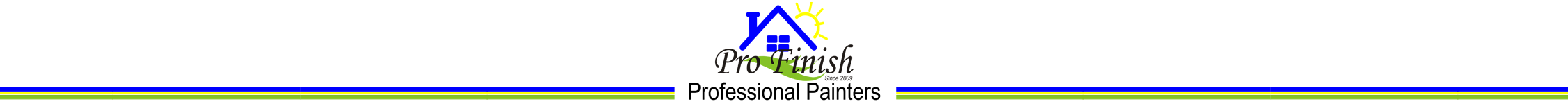 Pro Finish Painting